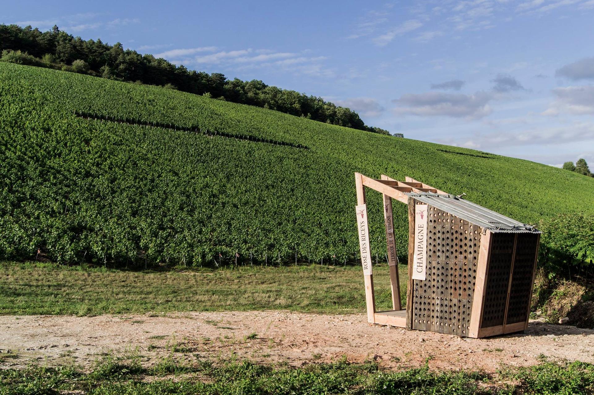Champagne, architecture et pédagogie: la renaissance des loges de vignes