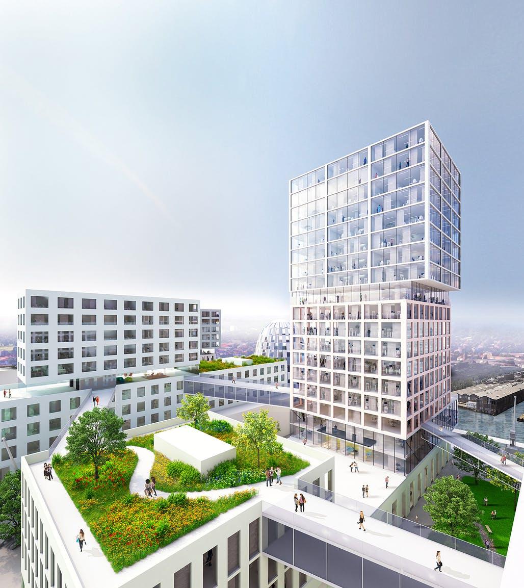 Début de la construction du port d'innovation de MVRDV à Hambourg, un projet à usage mixte de 70 000 m2