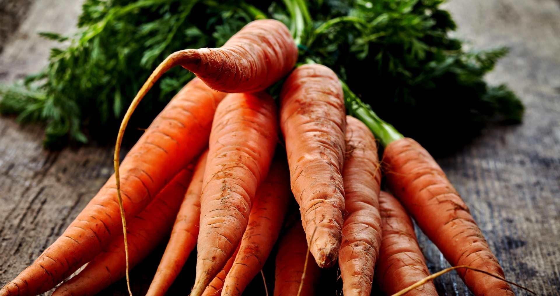 Les carottes, un ingrédient permettant de rendre le béton plus solide et plus écologique ?