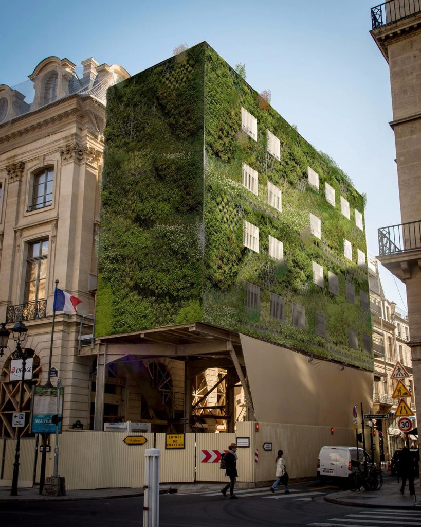 magasin-general-frederic-leyre-clement-carriere-nicolas-didier-echaffaudage-vegetal-faire-arsenal
